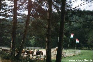Un maneggio nei pressi di Lorica